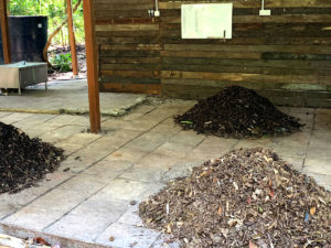 Creating Compost for