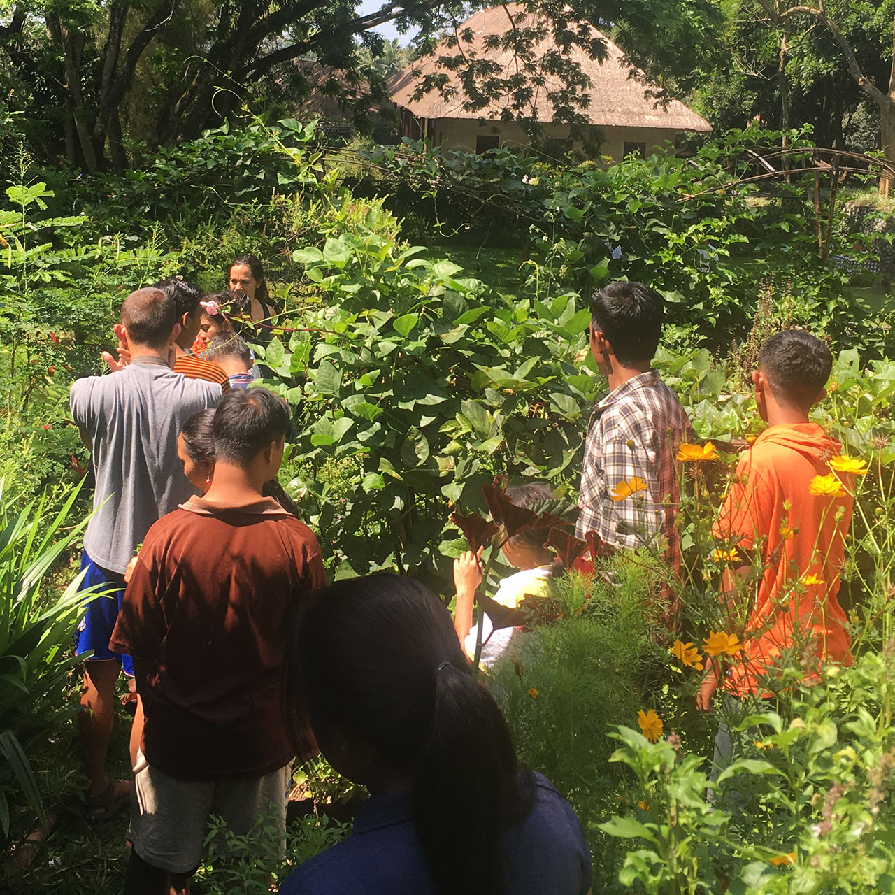 BGreener is a Bali based community of businesses and individuals making an environmental different on the island and supporting each other.