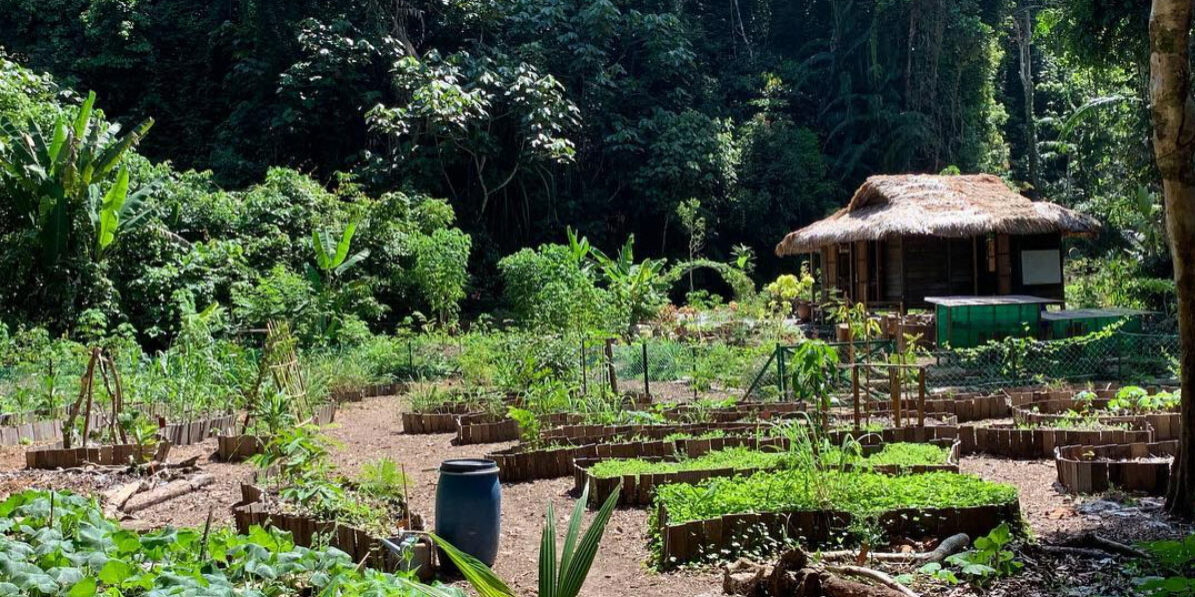 The permaculture garden at The datai langkaw